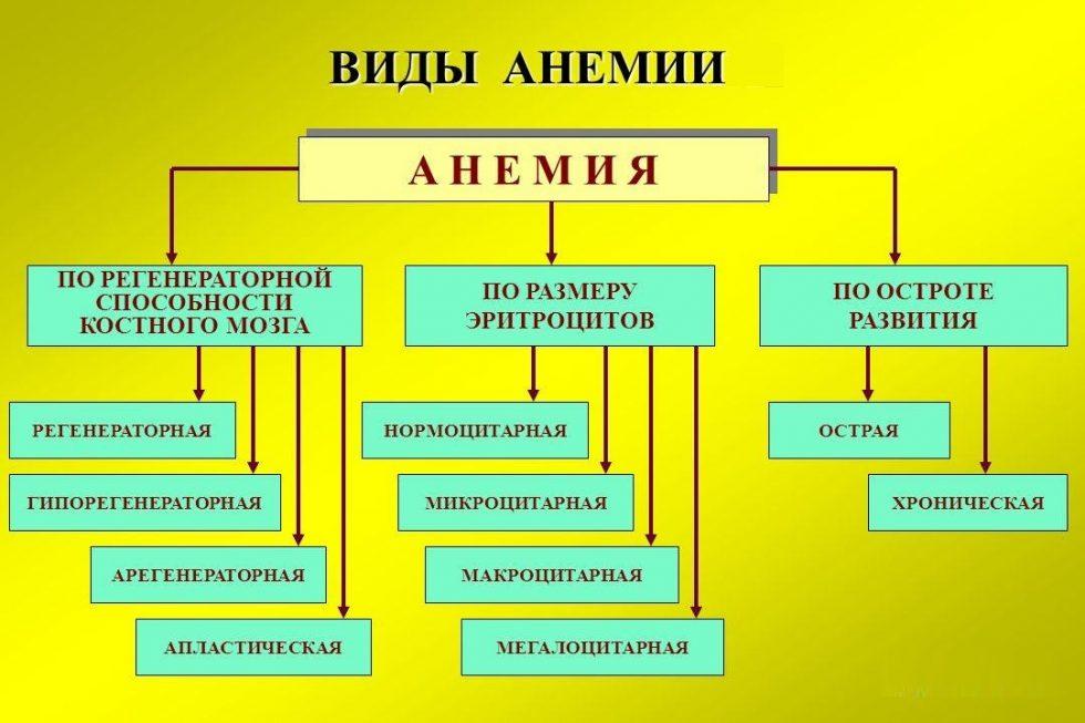 анемия виды