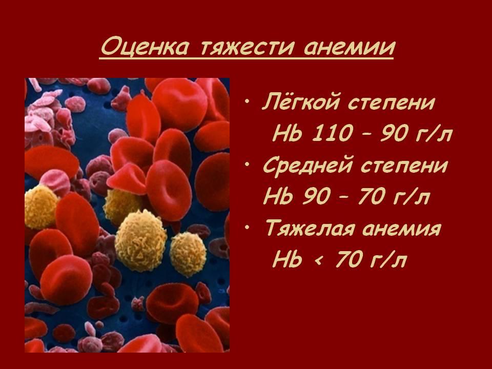 С анемией сколько живут thumbnail