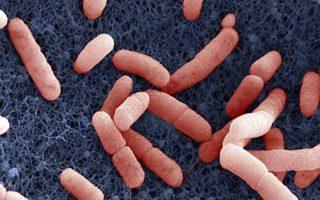 artrit-tuberkulezniy-2