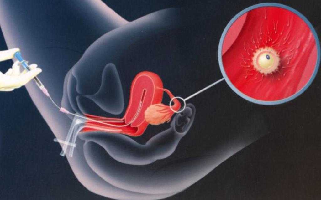 она впрыскивая остатки спермы собрана