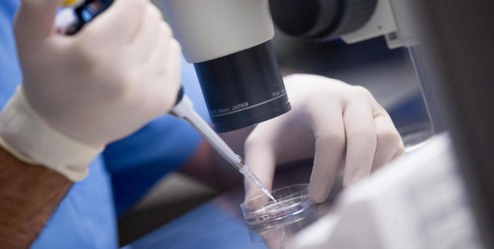 Экстракорпоральное оплодотворение