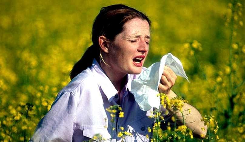 кашель аллергический