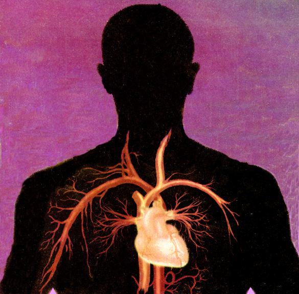 Миокардиодистрофия - типы заболевания