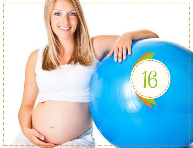 16 неделя\ беременности