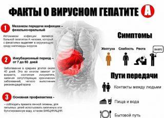 Желтуха инфекционная